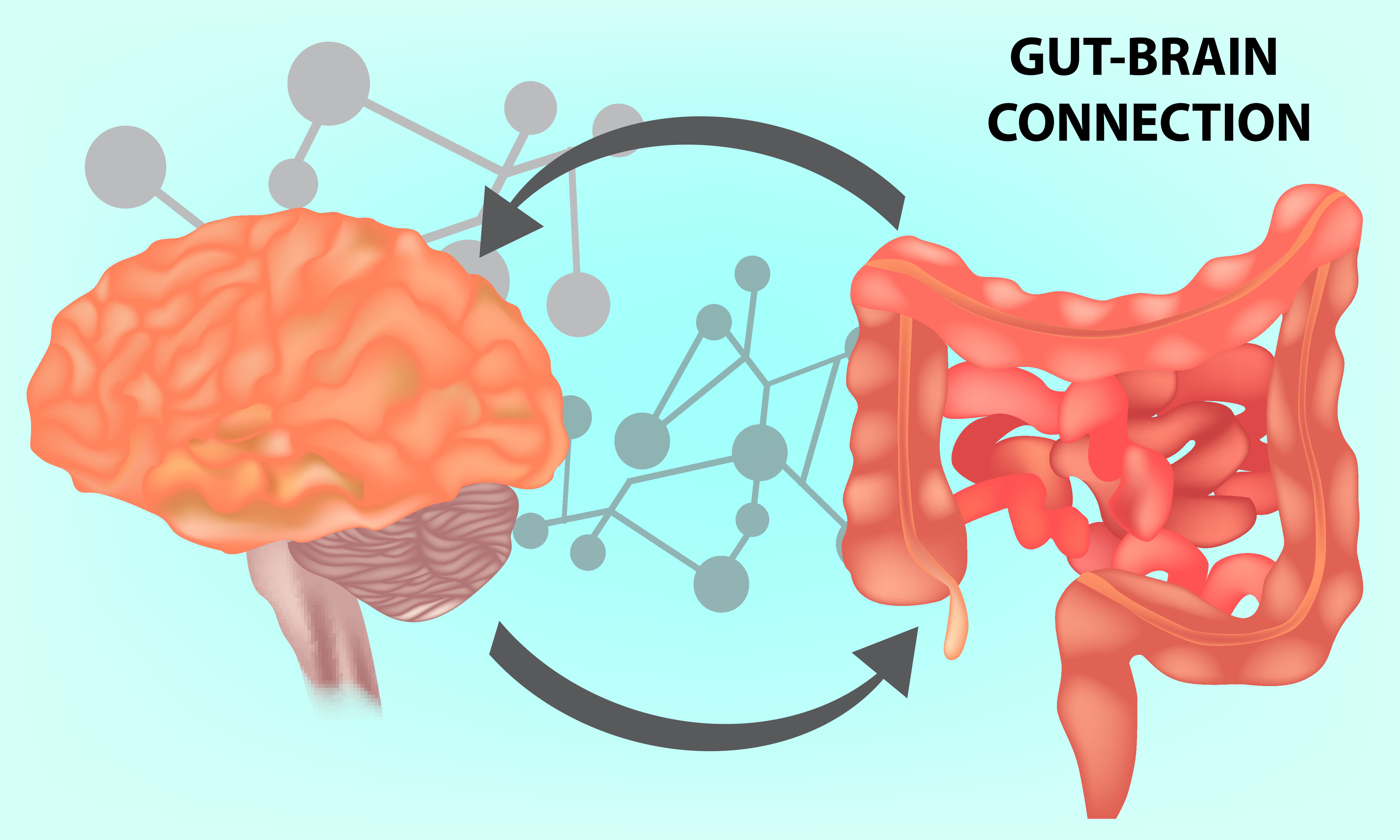 History And Evolution Of Disorders Of Gut-Brain Interaction And The Rome Foundation