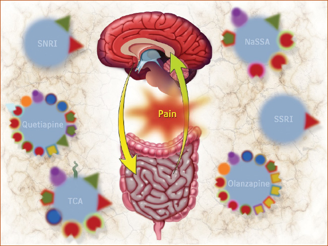 Neuromodulators for Functional GI Disorders